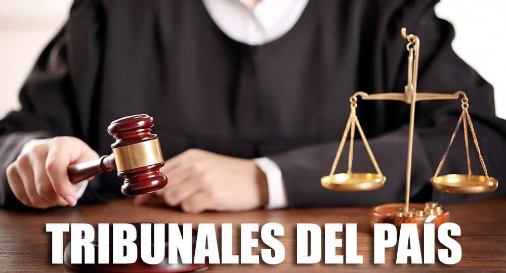 tribunales-del-pais